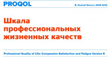 Шкала профессиональных жизненных качеств